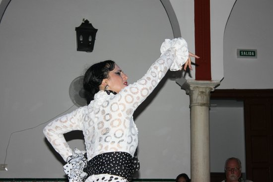 La Casa del Flamenco Auditorio Alcantara: La Casa del Flamenco