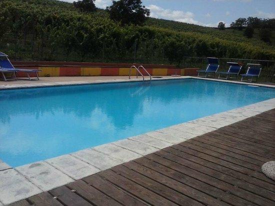 Agriturismo La Mussia: piscina immersa nelle vigne, che pace!