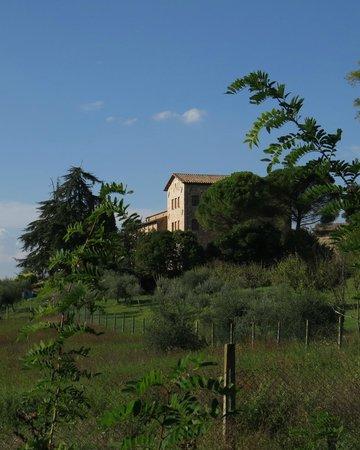 Hotel Assisi Garden