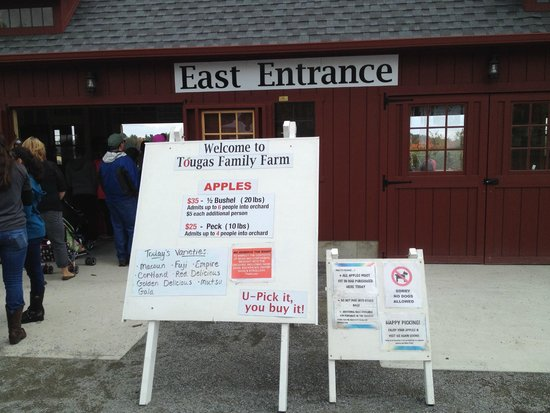 Tougas Family Farm: Signage at the entrance to the apple picking area