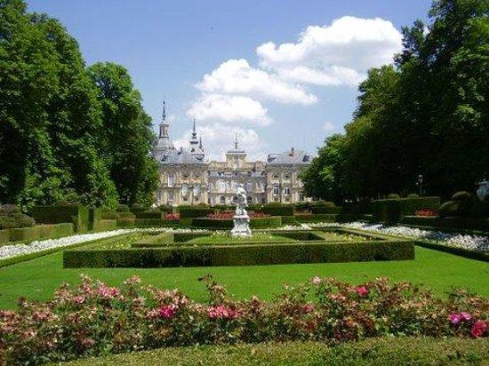 Jardines de la granja y palacio real picture of jardines for Jardines de san ildefonso