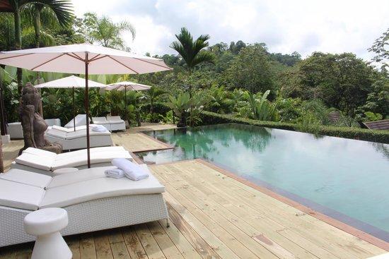 Oxygen Jungle Villas : Pool area