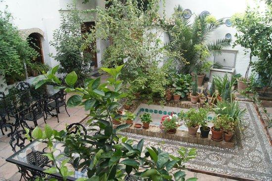 Casa del Aljarife - Granada: Le patio