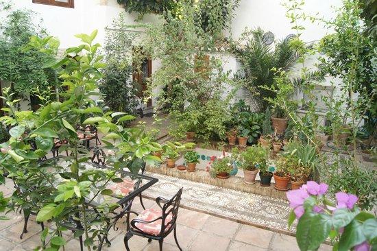 Casa del Aljarife - Granada: Le patio de Christian