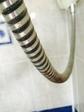 Braveheart City Centre Guest House Edinburgh: Shower hose