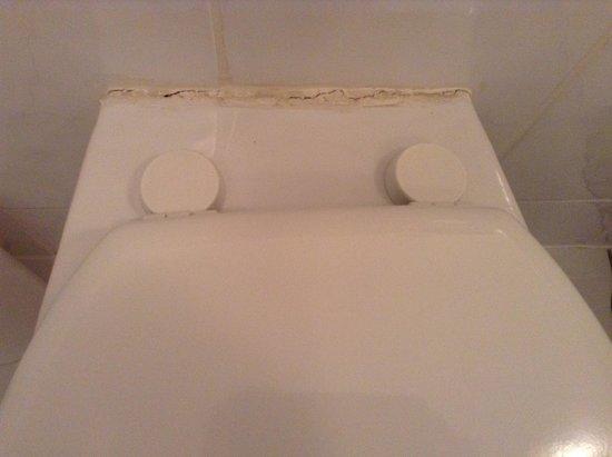 The Manor: Toilet