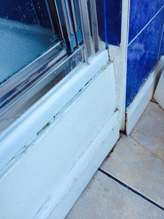 Braveheart City Centre Guest House Edinburgh: Shower door