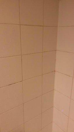 Boulder Marriott : gross mildew covering the shower grout