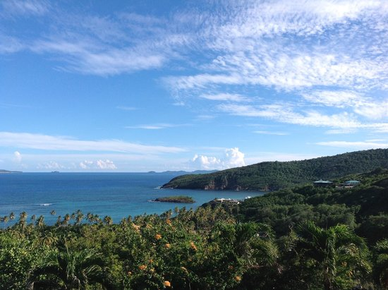 Sugar Reef Bequia: View from French House