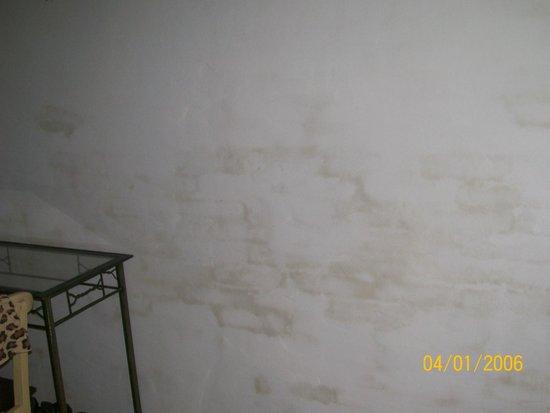Plaza Milenium : noten la humedad de las paredes habitacion 305 tercer piso