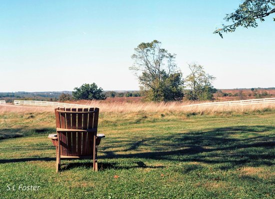 The Trustees' Table: View of the Shaker property at Pleasant Hill