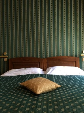 Hotel u Schnellu: The green Emerald wallpaper