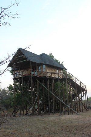 Pezulu Tree House Game Lodge: CASA