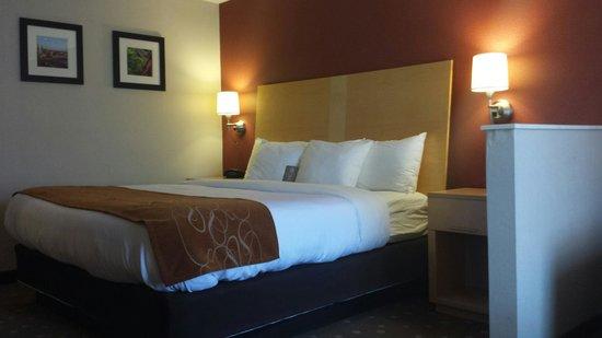 Comfort Suites: Beautiful Comfy Bed!