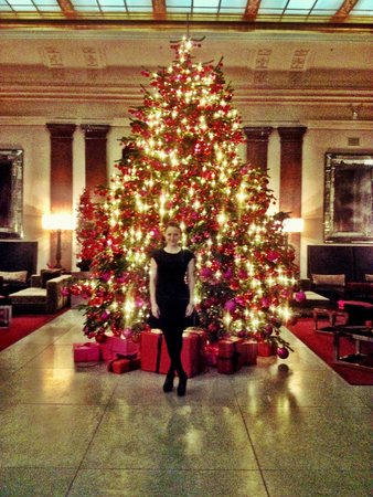 Hotel de Rome: The beautiful lobby around Christmas time gets you into the right holiday mood...