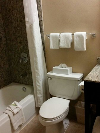 Holiday Inn Express - Los Angeles Downtown West: Spotless bathroom
