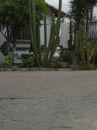 写真Posada Don Luis Hotel枚