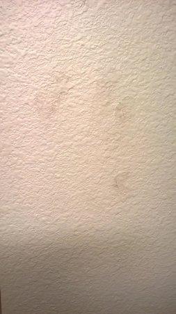 La Quinta Inn & Suites Marshall: Dirty bathroom hand prints