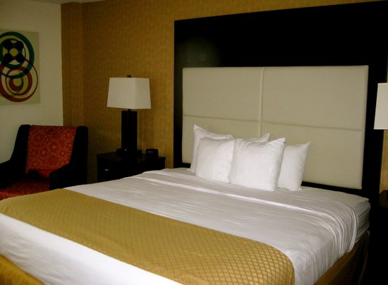 DoubleTree by Hilton Hotel Chattanooga Downtown: One Bedroom King Size Bed
