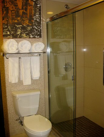 DoubleTree by Hilton Hotel Chattanooga Downtown: One Bedroom Bathroom