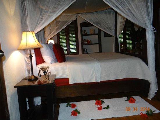Las Cascadas Lodge: Bejuco Cabin