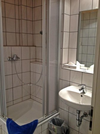 Businesshotel & Appartements Stuttgart-Vaihingen: Sink and Shower