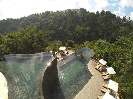 Hanging Gardens Plunge Pool, Ubud image courtesy Tripadvisor