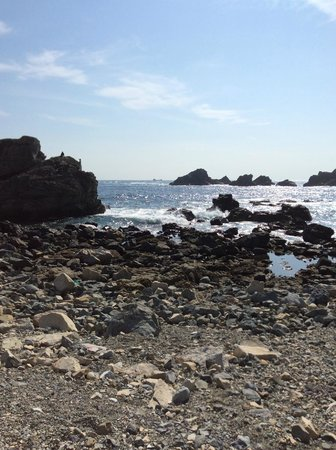 Shiono Cape Lighthouse : Shiono cape