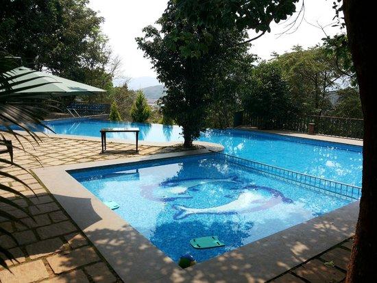 Pool View Picture Of Wayanad Silverwoods Kalpetta Tripadvisor