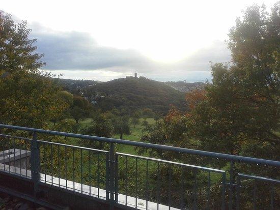 KTC Koenigstein : Blick auf Burg Königstein