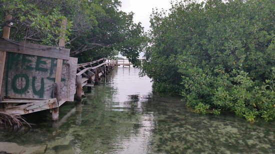 Sunshine Key RV Resort & Marina: Old fishing swimming pier. Place is under major up grades. Nice canal to view wild life and walk