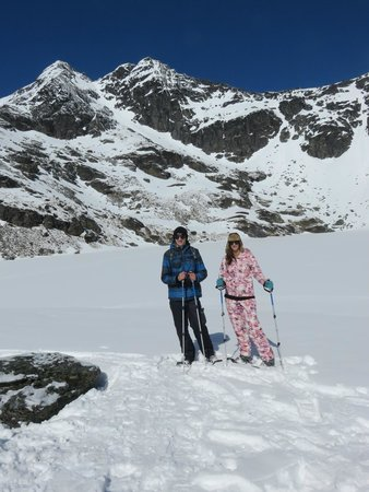 Guided Walks New Zealand - Day Tours: up the top