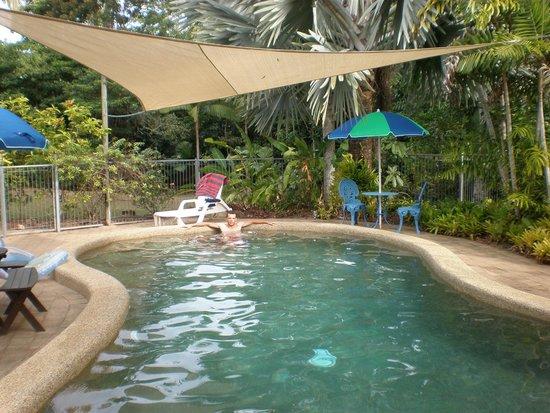 Hibiscus Lodge: morning swim