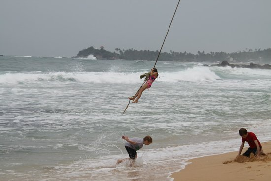 Ambalama Villa : rope swing