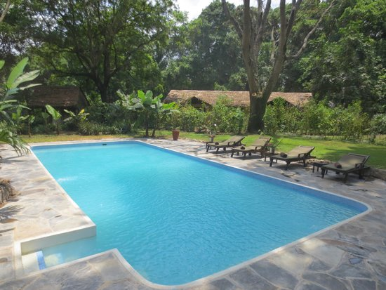 Rivertrees Country Inn : New swimming pool now open!