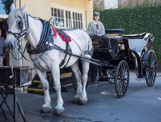 Old South Carriage Company: Private guide and carriage