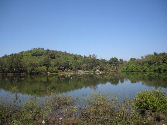 Mayem Lake View : Mayem Lake