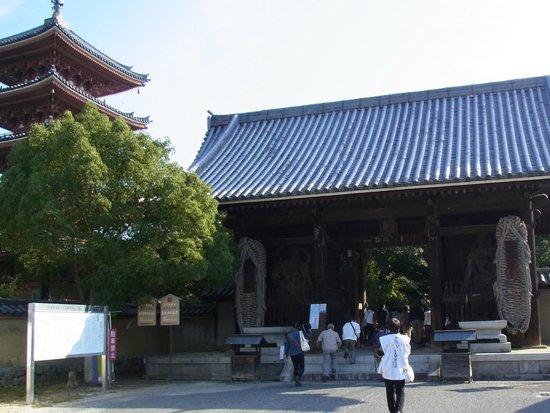 Shidoji Temple: 仁王門(重文)