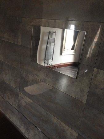 Tv in bathroom in 110