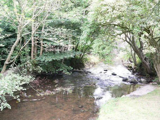 Loggerheads Country Park: River Alyn