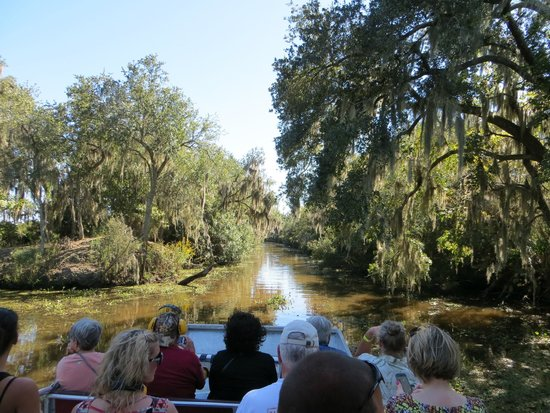 New Orleans Tour Company: Driving down the Bayou