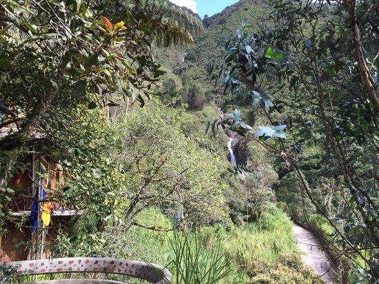 Hosteria Finca Chamanapamba: Detalle del paisaje