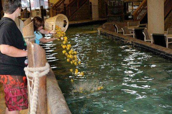 Glacier Canyon Lodge : Duck Races