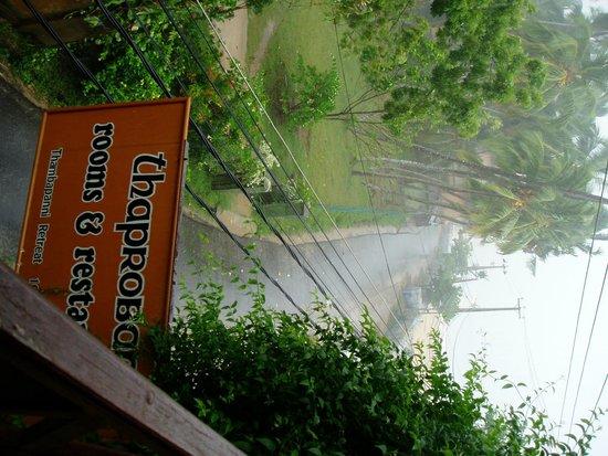 Thaproban Beach House: 通路側 部屋からの眺め