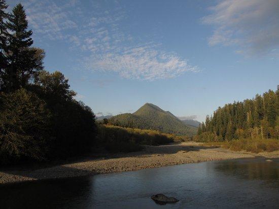 Lake Quinault: Quinault river