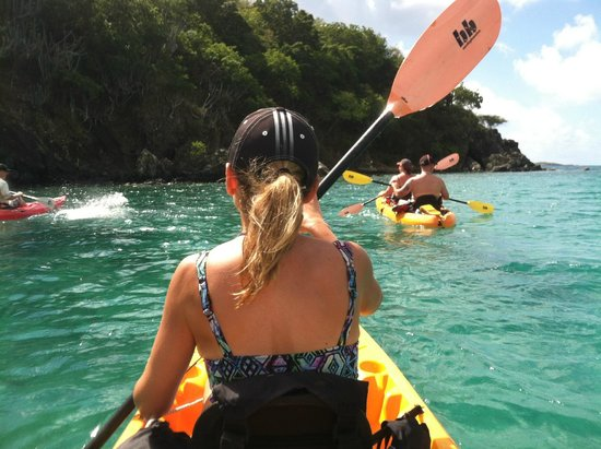 Hidden Reef Eco-Tours : Wonderful day on the water!