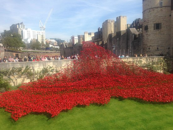 Club Quarters Hotel St. Paul's: Moving tribute to WW1 at the Tower of London