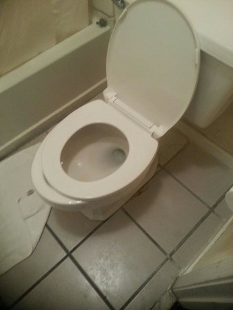 Turbeville, SC: Can't afford a toilet seat that fits the toilet?