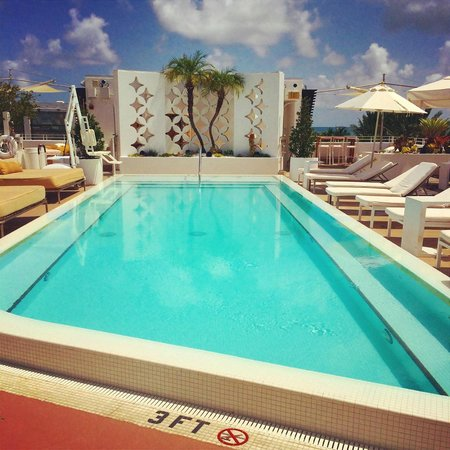 pool picture of dream south beach miami beach tripadvisor. Black Bedroom Furniture Sets. Home Design Ideas