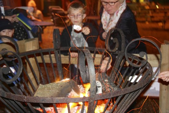 Robin Hill Country Park: toasting marshmallows